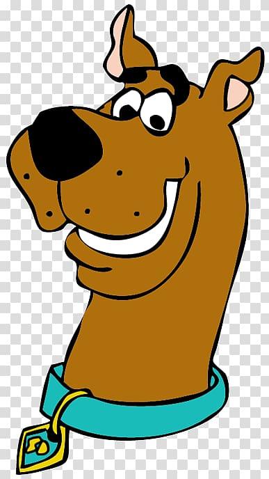 Scooby doo shaggy.