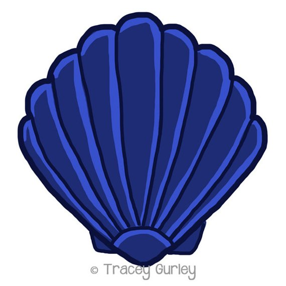 Navy scallop shell.
