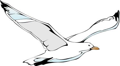 15 seagulls clipart.