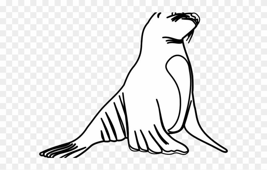 Leopard Seal Clipart Ocean Animal