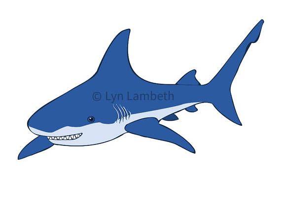 Shark clipart instant.