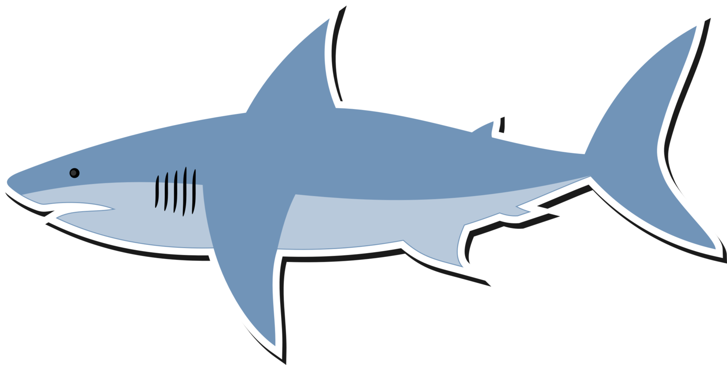 free vector clipart shark no sign up great white fin