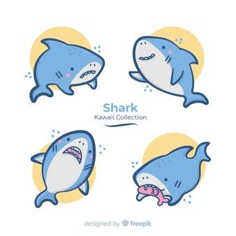 Shark vectors photos.