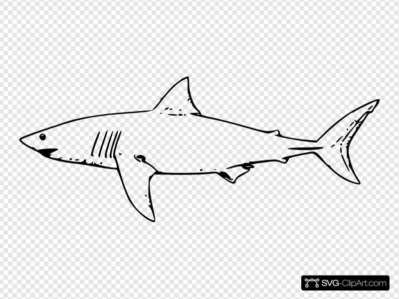 White shark clip.