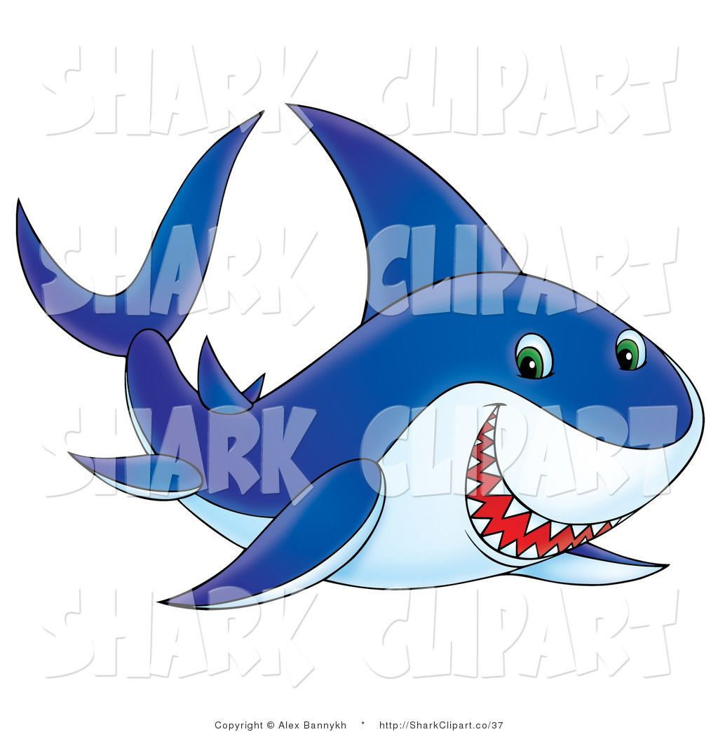 Shark images clipart.
