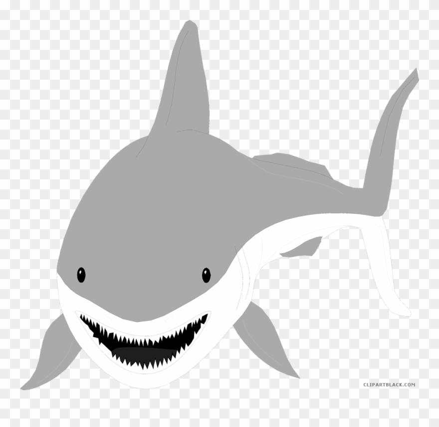 Shark clipart great.