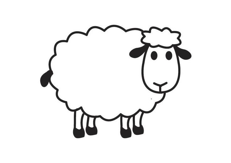 black sheep clipart fluffy