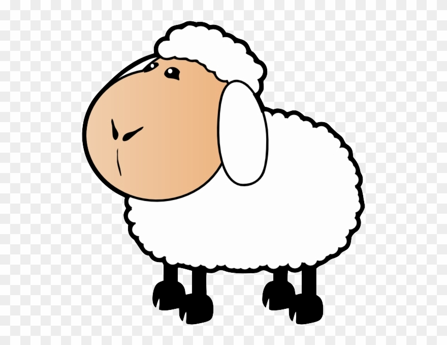 Free sad sheep.