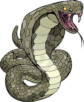Scary Snake Cartoon snake tattoo images