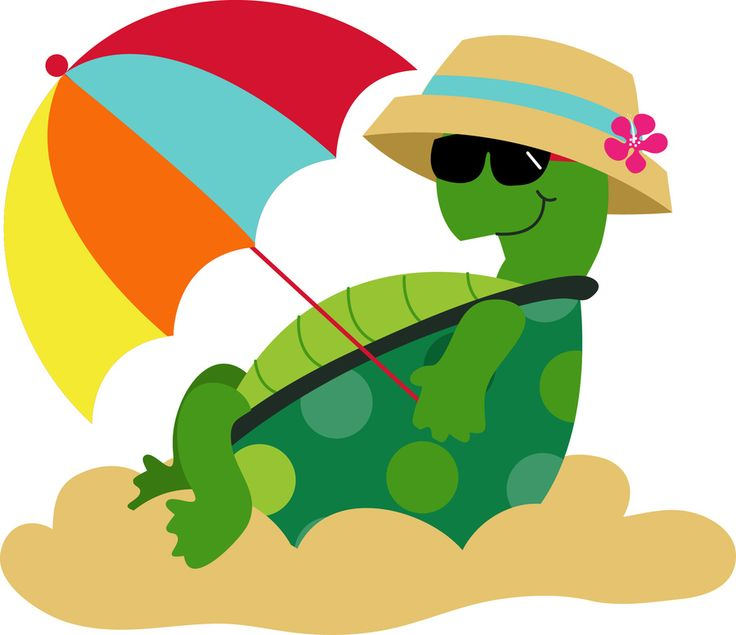 Sea Turtle clipart, cute summer