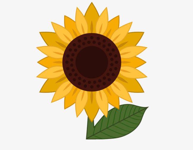 Cartoon sunflower sunflower.