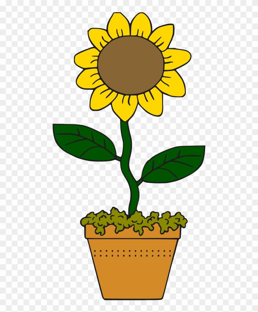 Victorian sunflower clipart.