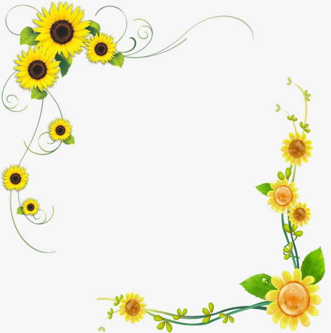 Sunflower sunflower clipart.