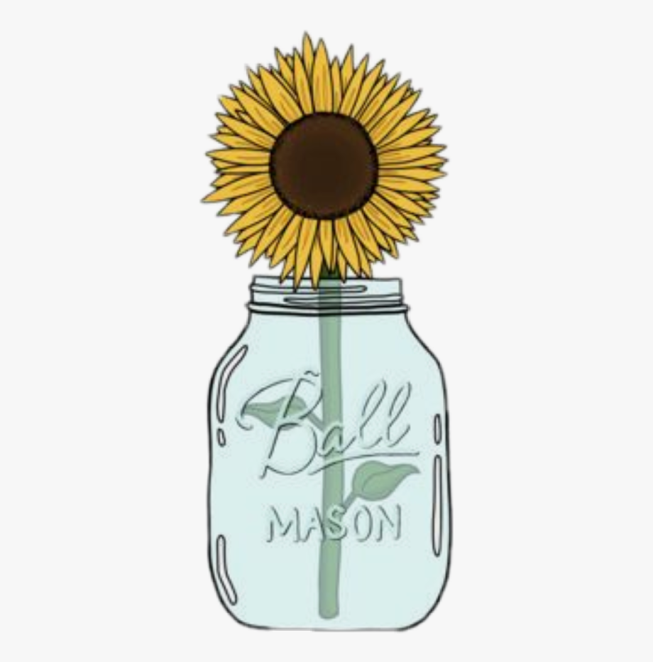 Sfondi sticker sunflower.