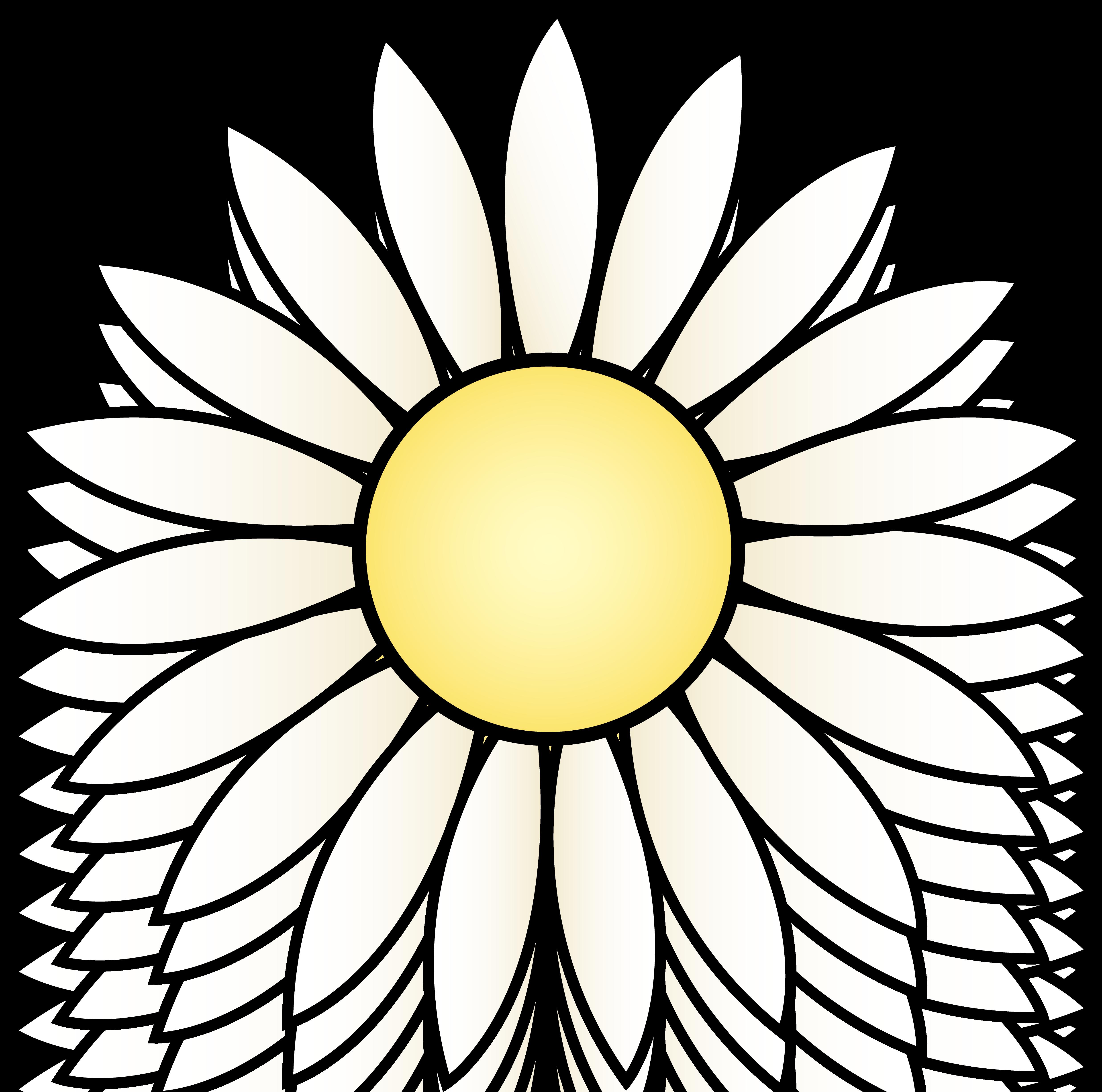Best sunflower clip.