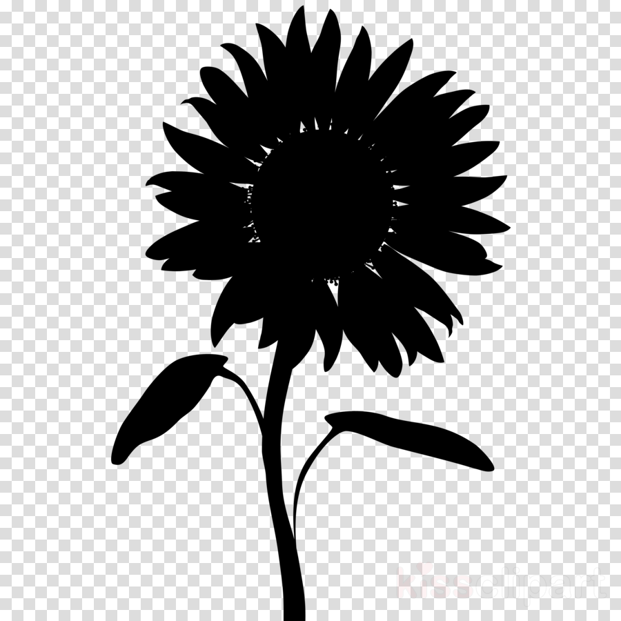 Sunflower clipart silhouette pictures on Cliparts Pub 2020!