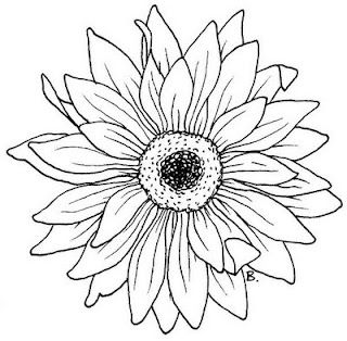 Daisysunflower flower coloring.