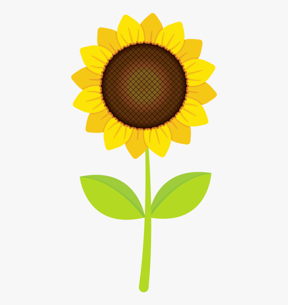 Sunflower clipart real pictures on Cliparts Pub 2020!