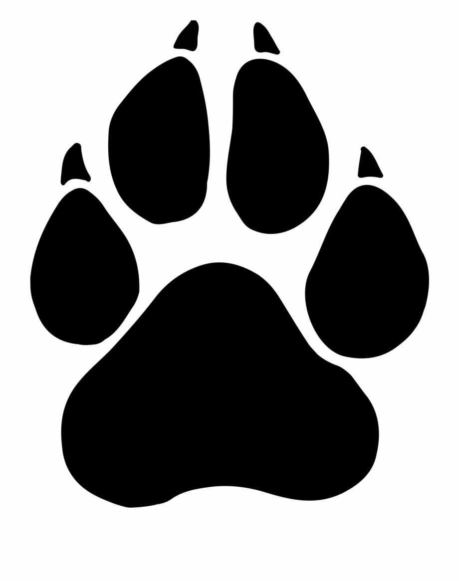 cat paw print clipart panther