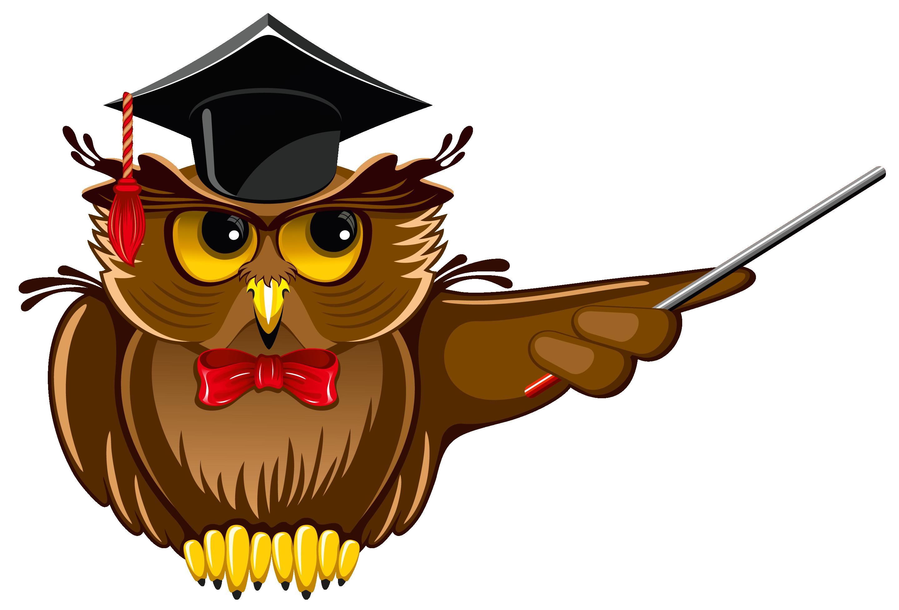 Owl teacher png.