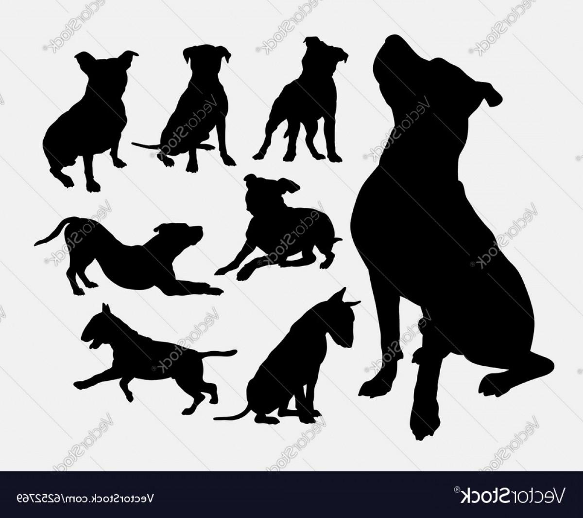 Pitbul Dog Silhouette Vector