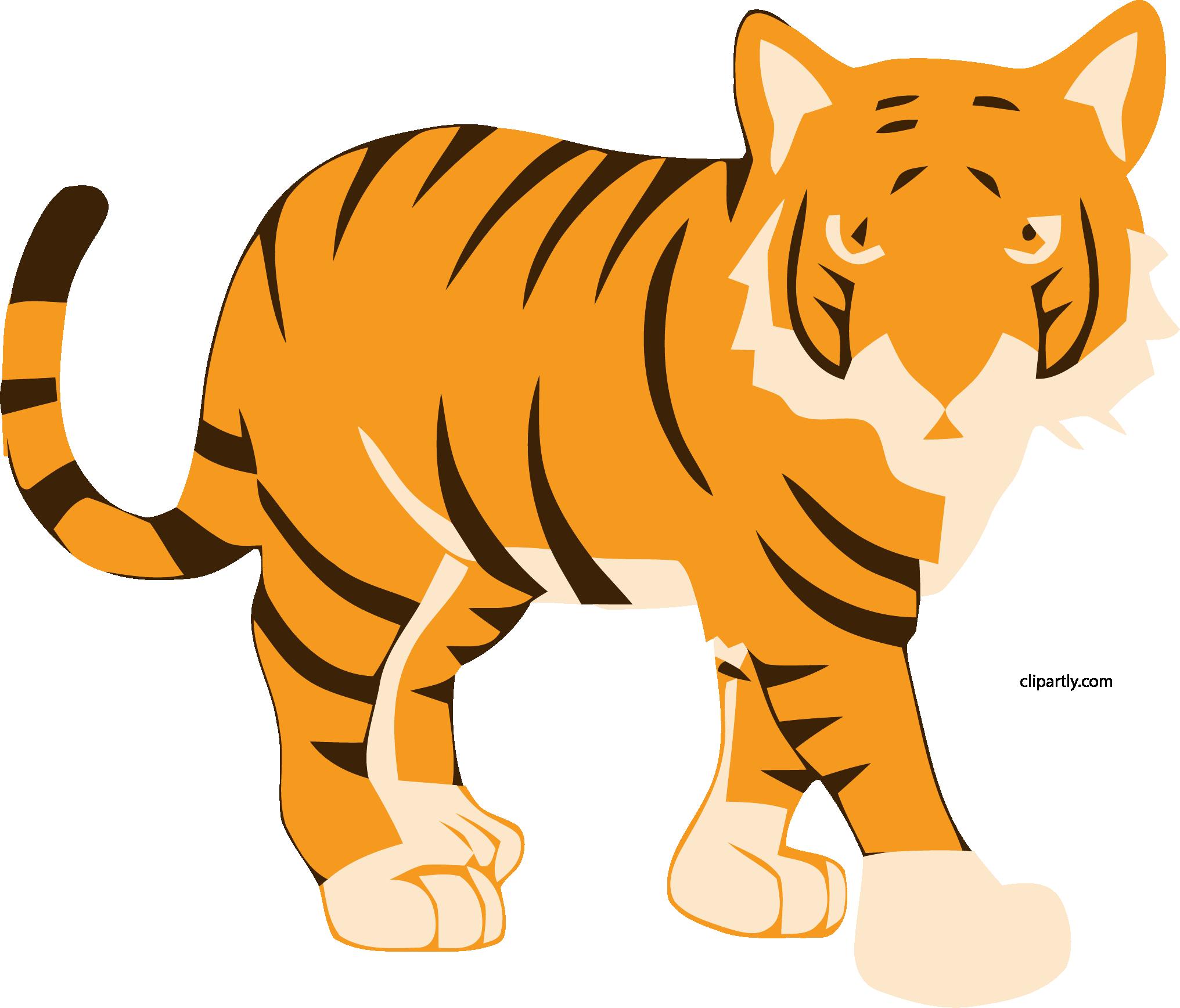 New sitting tiger.