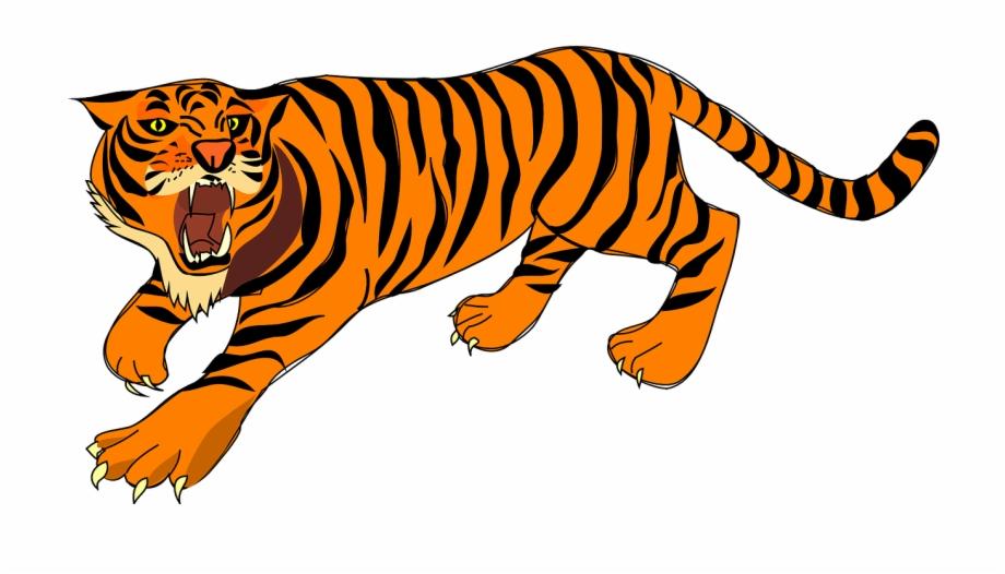 Tiger angry defense.