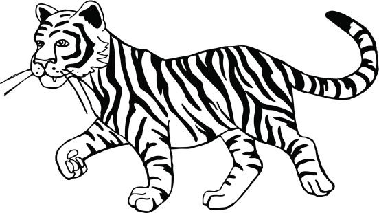 98 tiger clipart.