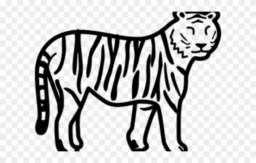 Save tiger easy.