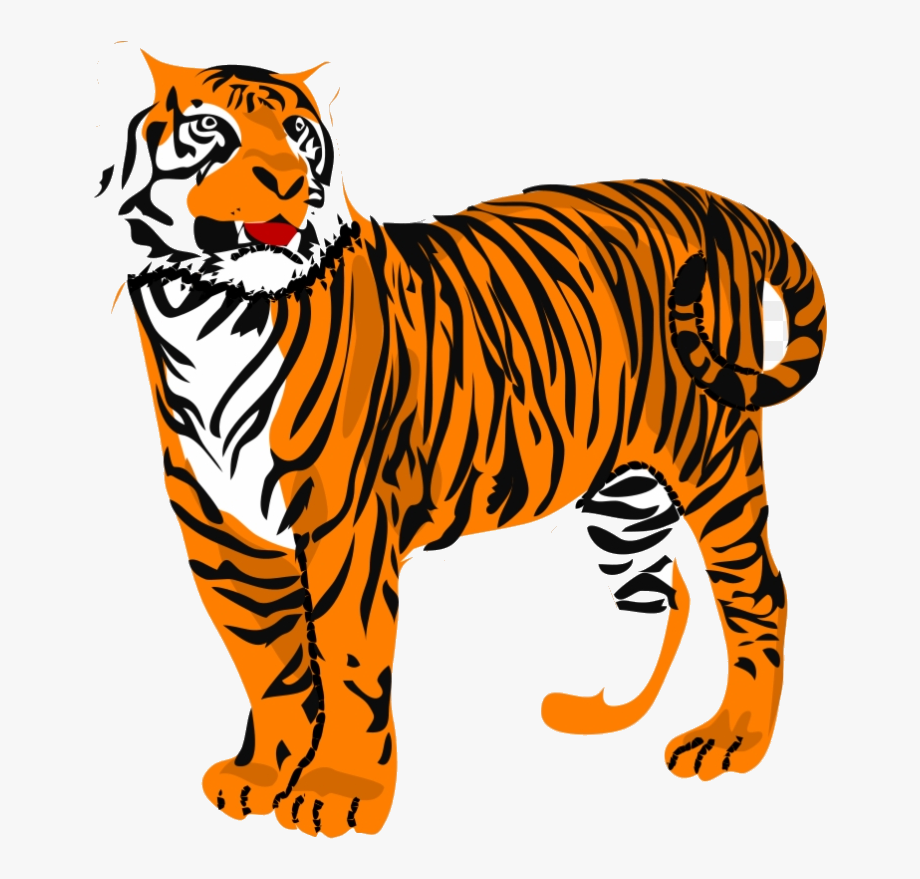 Transparent background tiger.
