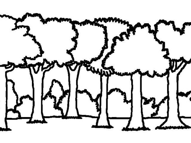 forest clipart black and white simple
