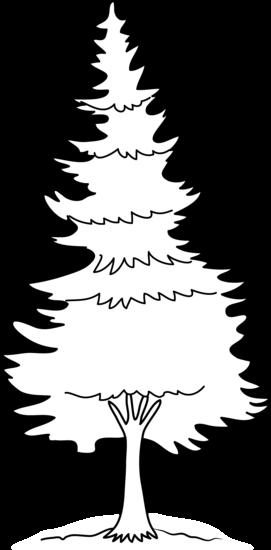 Free pine trees.