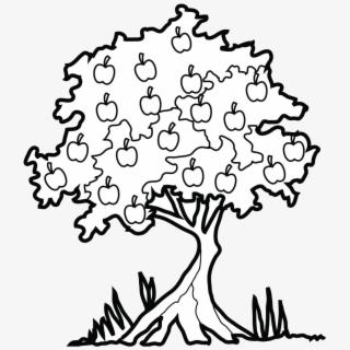 Bare tree coloring.