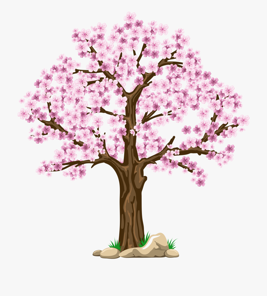 Images Cherry Blossom Clip Art Digital Pink Tree Clipart