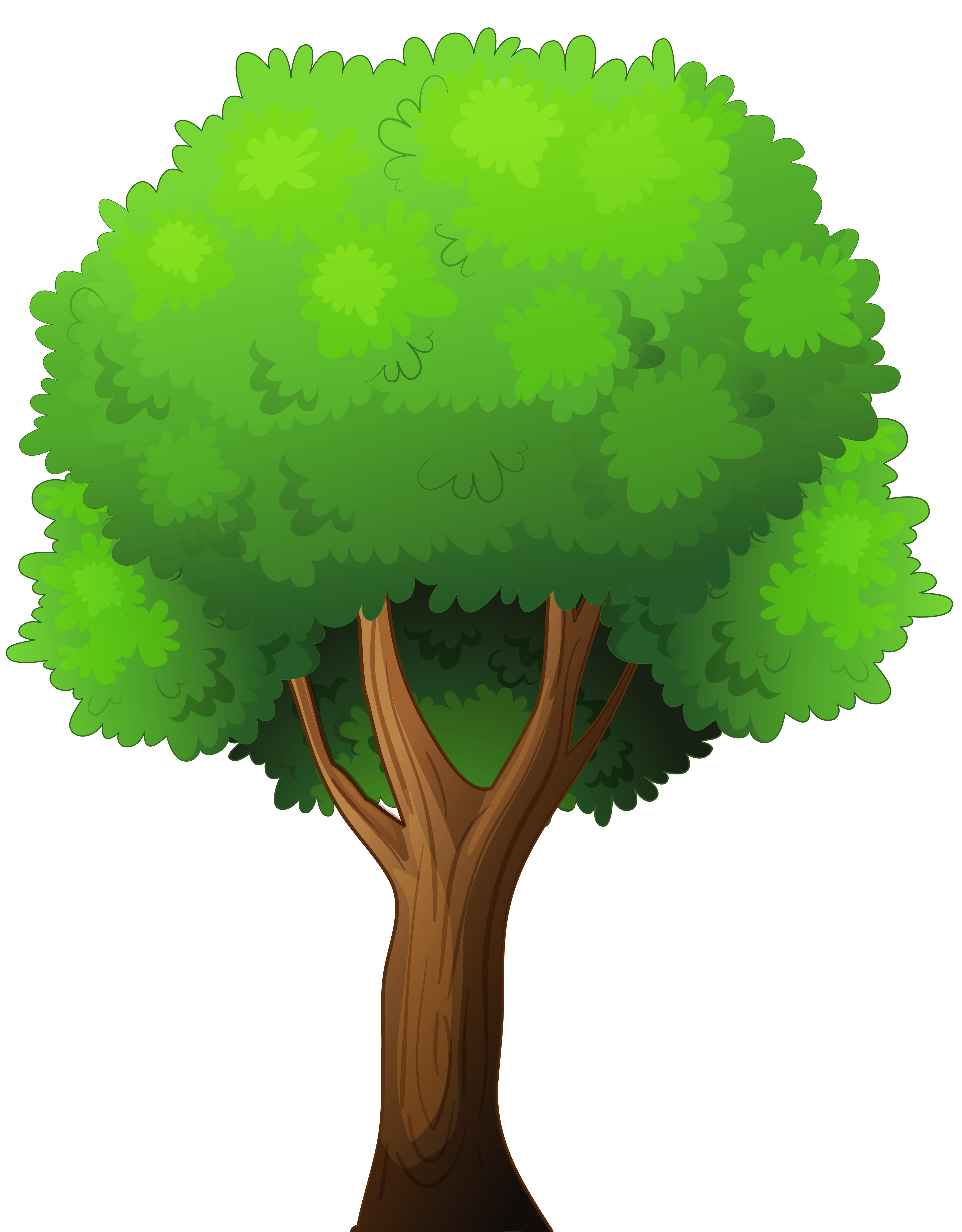 Tree png clip.