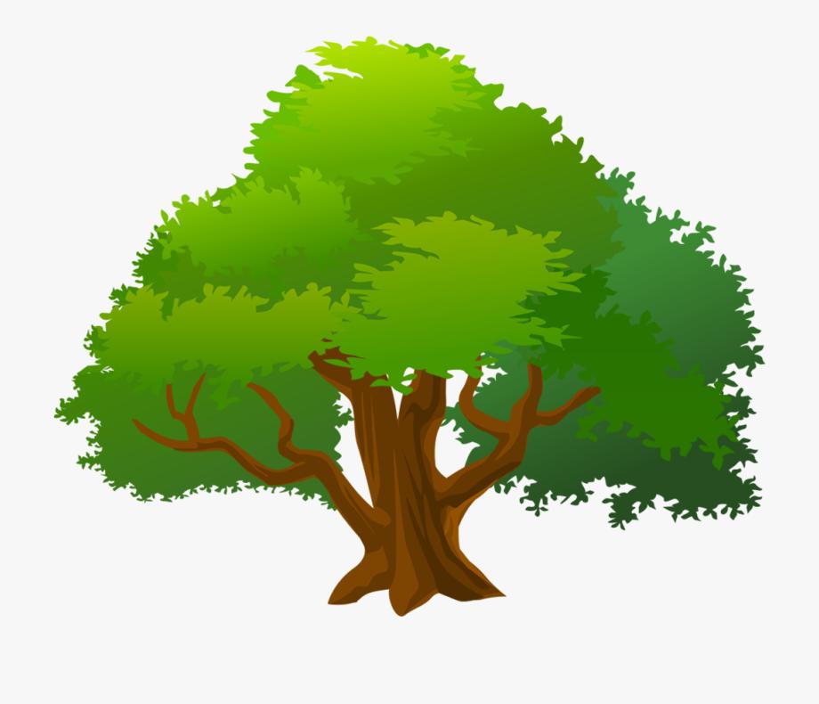 Mango Tree Clip Art , Png Download