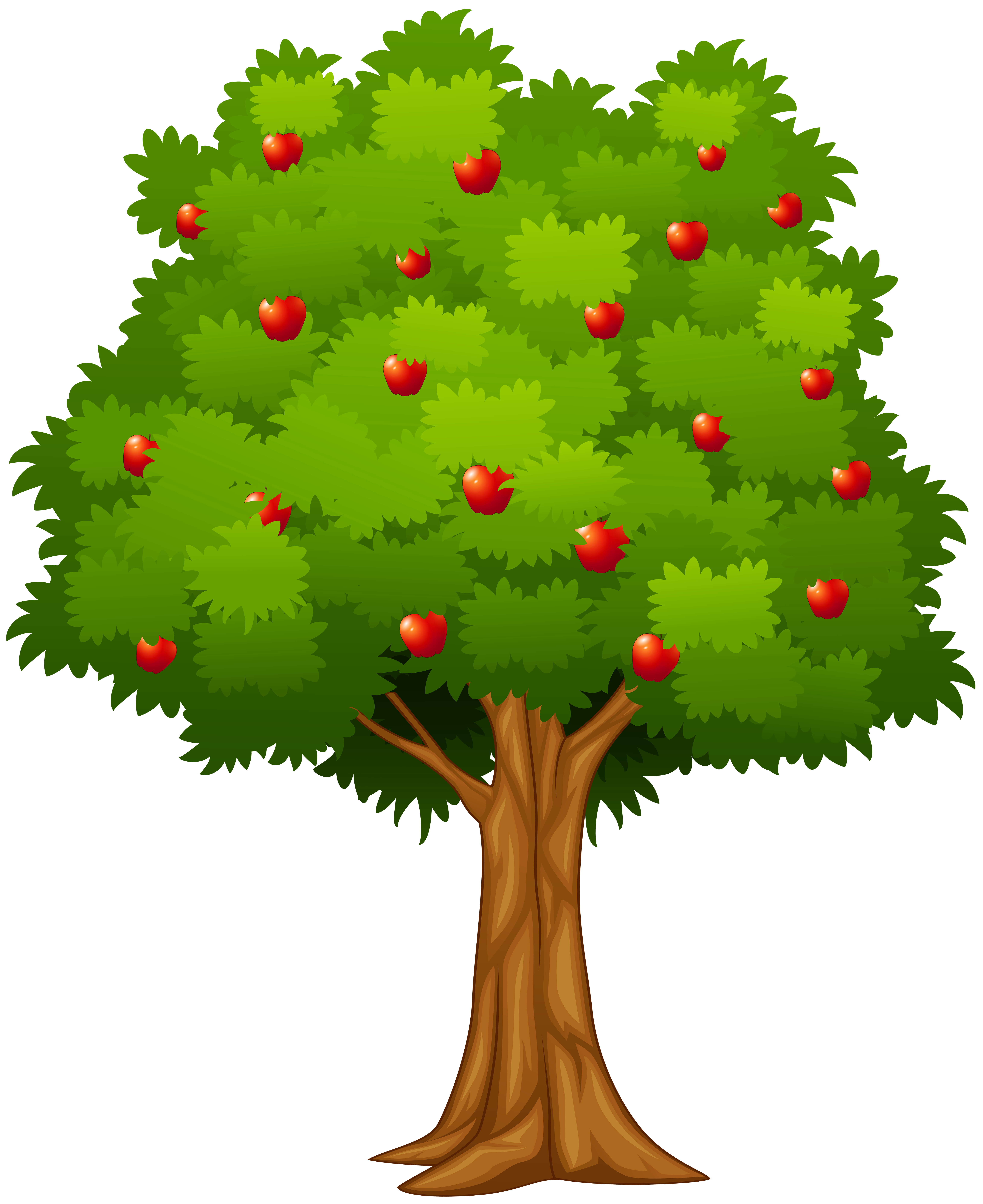 Apple tree png.
