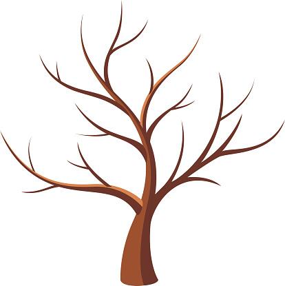 66 bare tree.