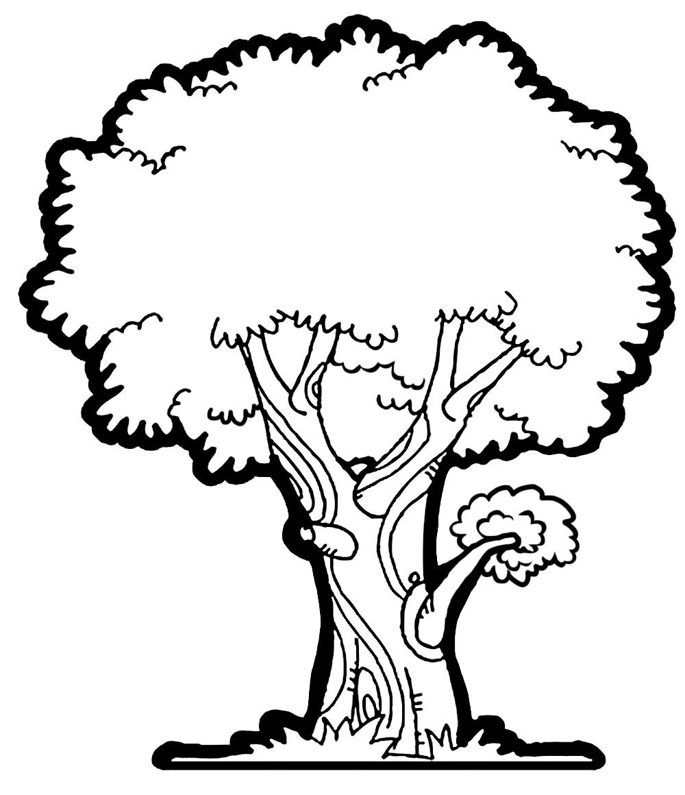 39 tree clipart.