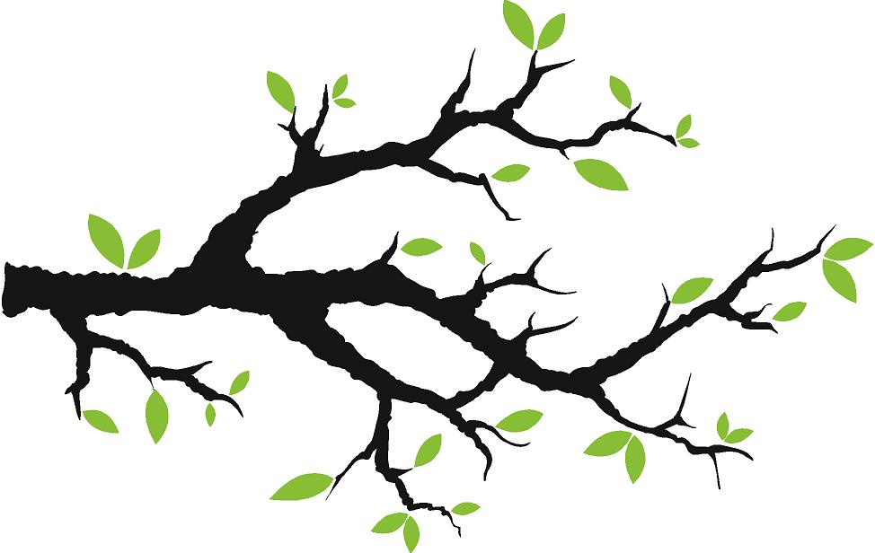 Free Picture Of A Tree Branch, Download Free Clip Art, Free