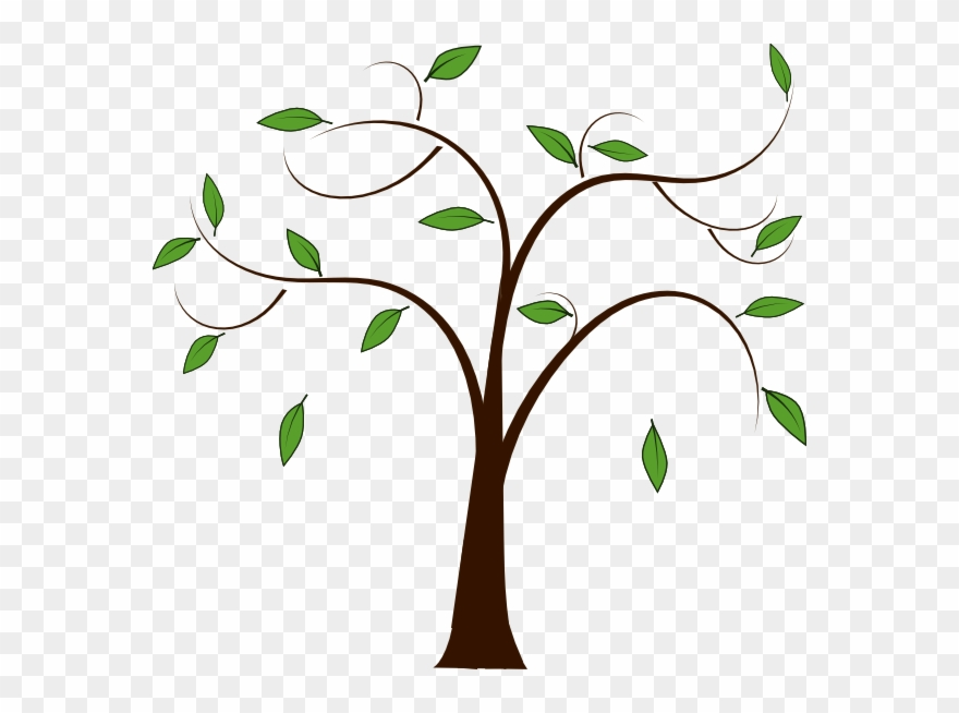 Branch Clipart Family Tree