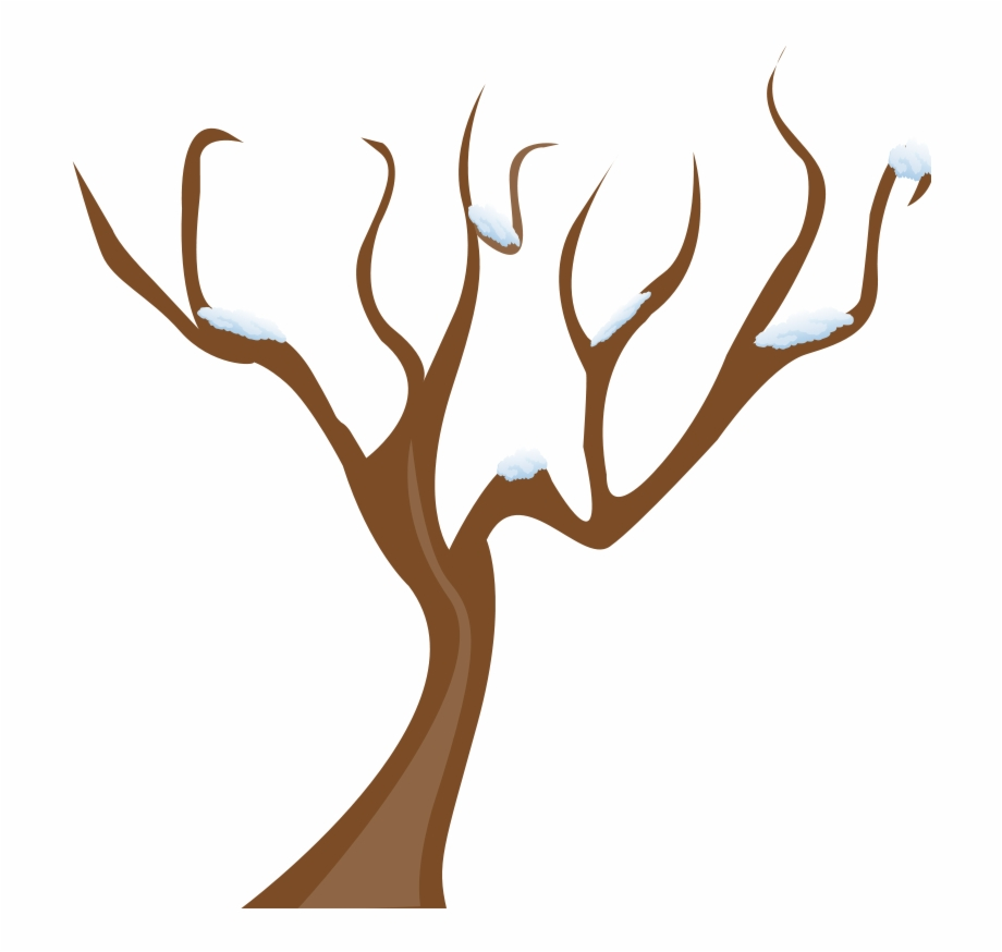 Banner Transparent Stock Clipart Tree Branch