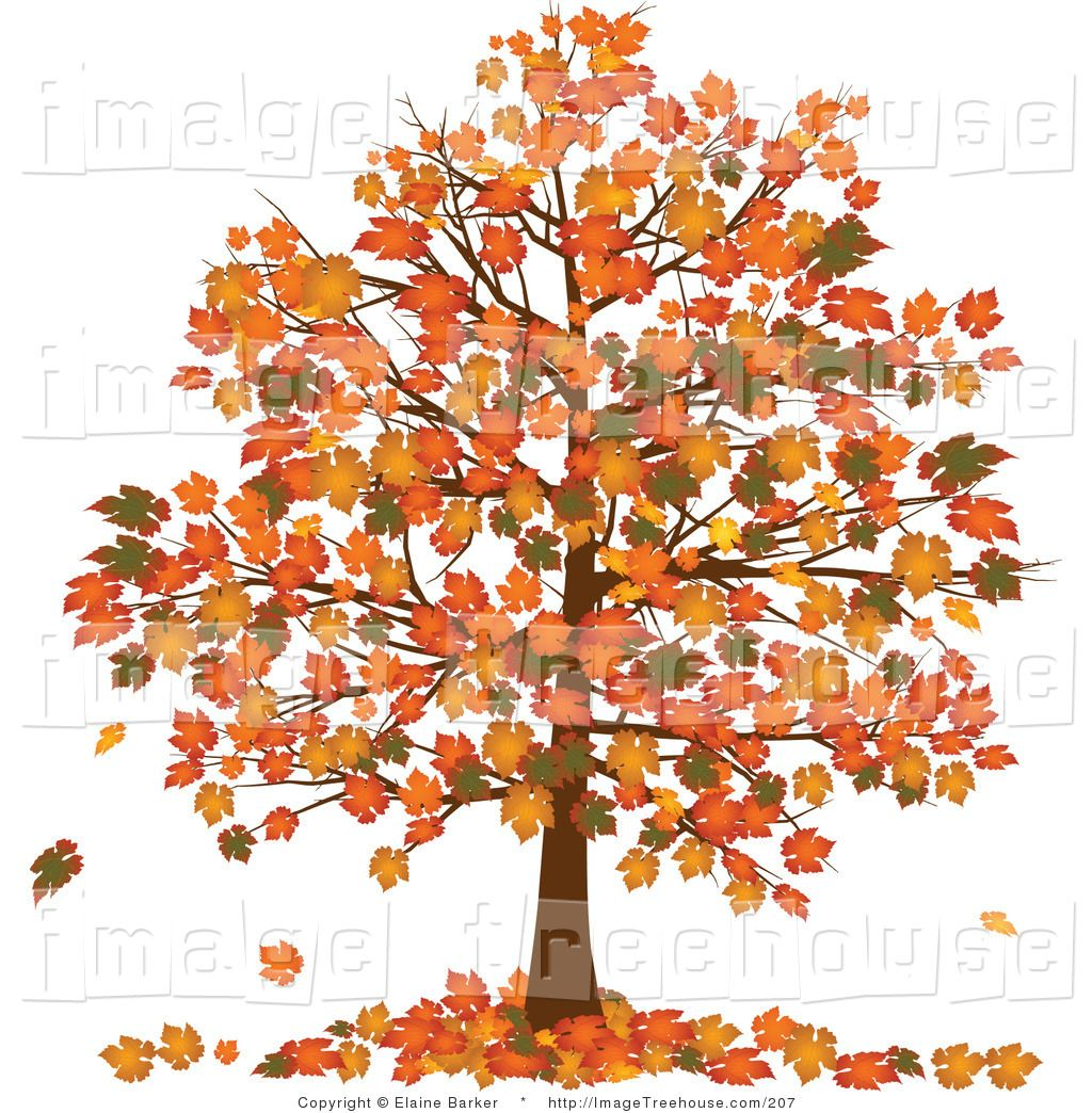 Autumn Tree Clipart