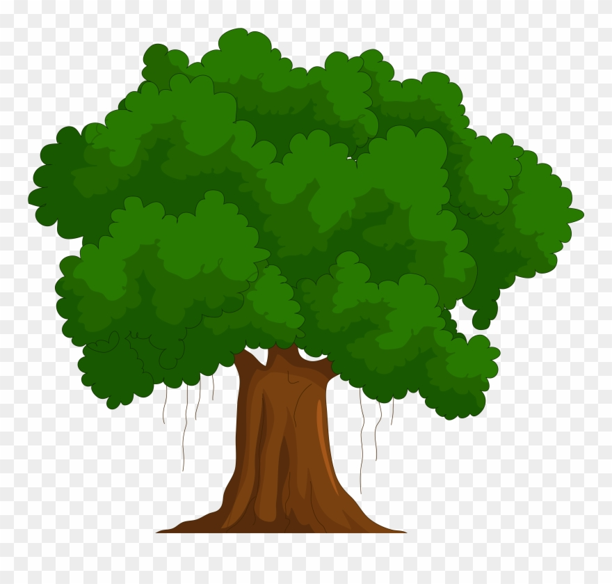 Clipart Of Tree, Trees And Called