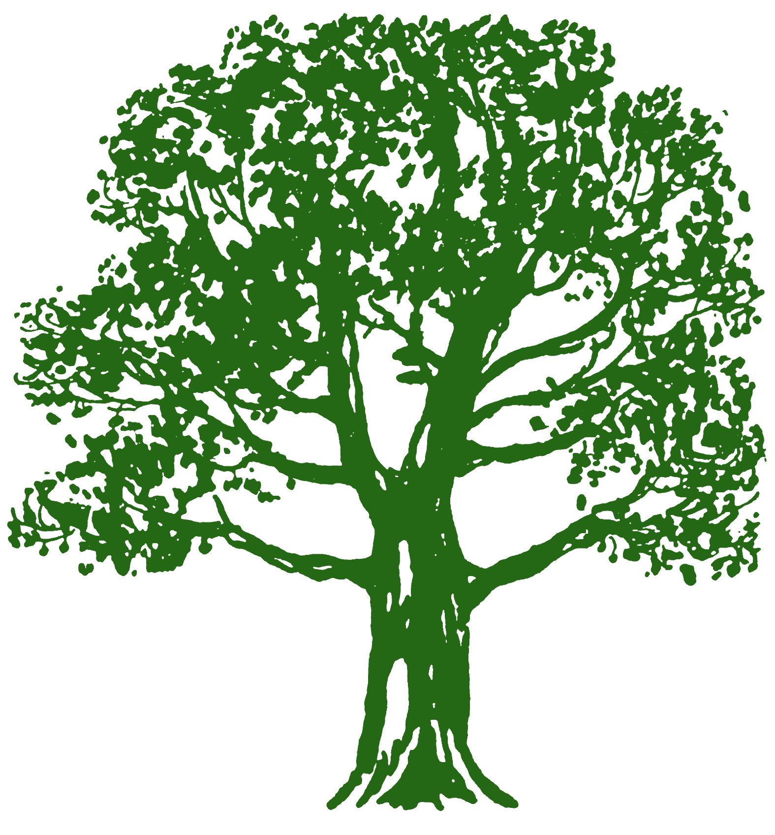 Tree clipart tree.