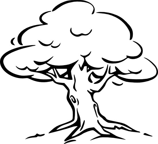 Free Tree Outline, Download Free Clip Art, Free Clip Art on