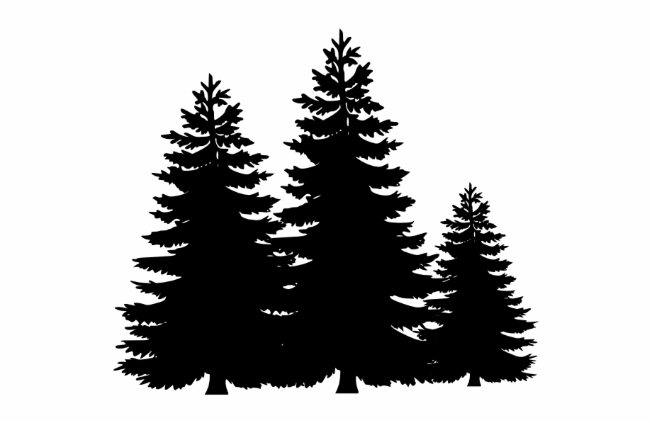 Black And White Pine Tree Clipart