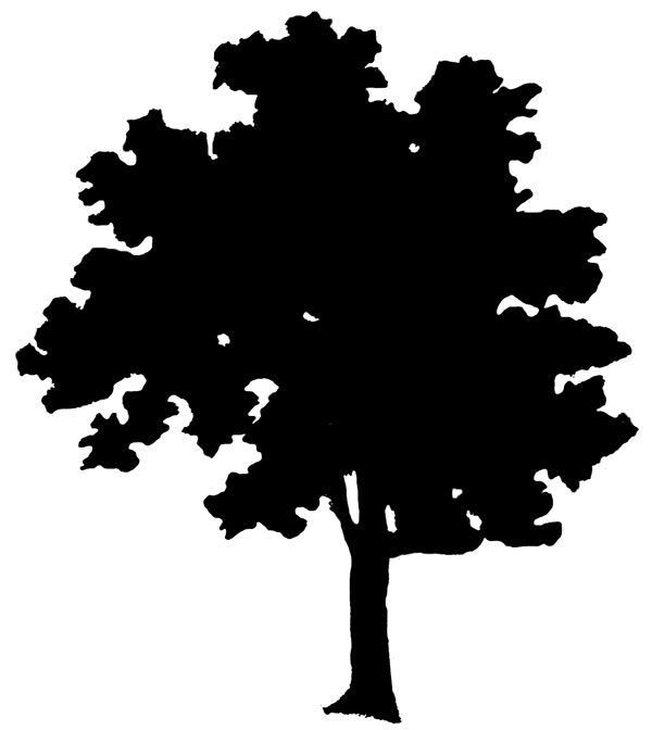 Free Free Tree Silhouette, Download Free Clip Art, Free Clip