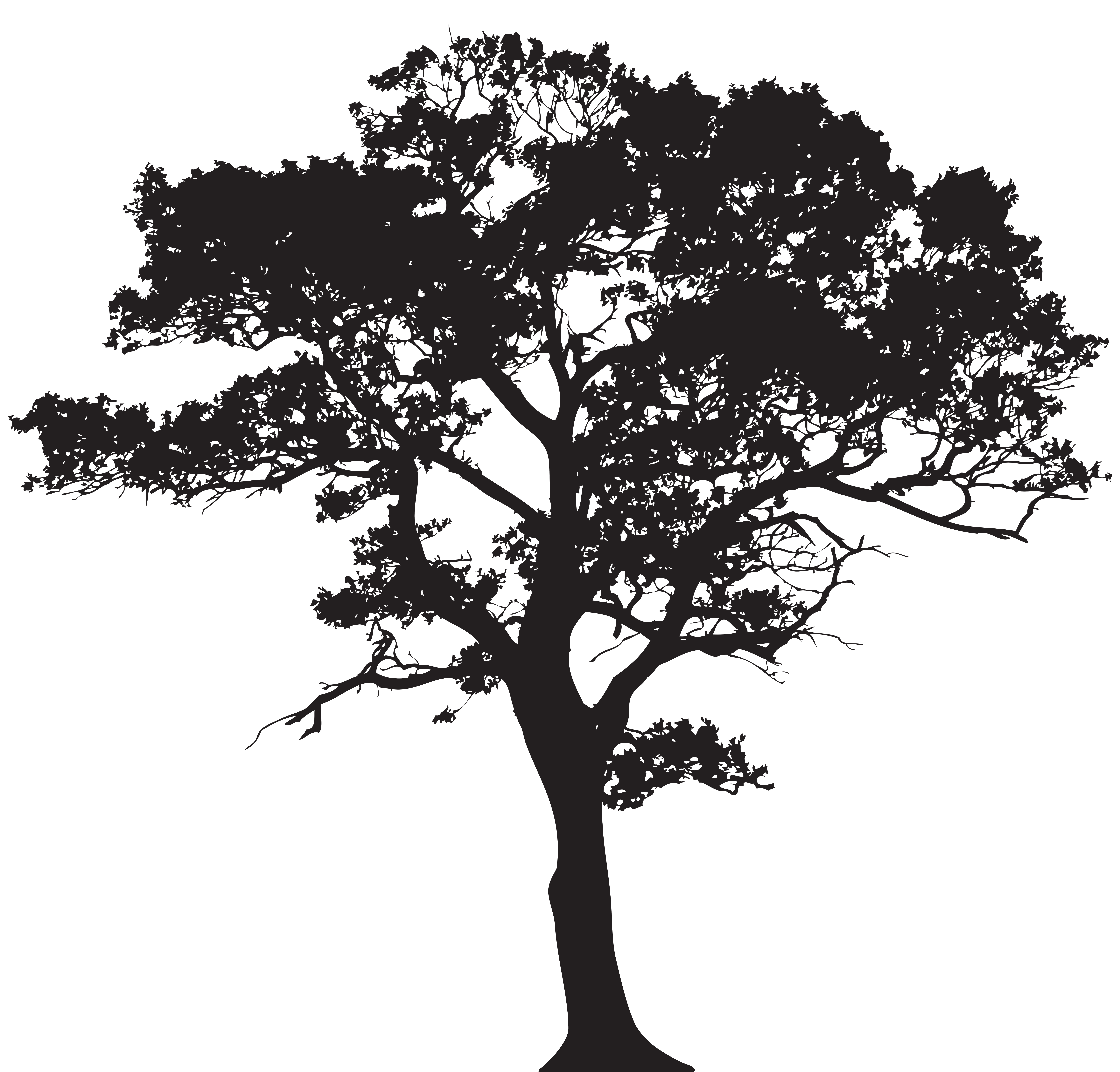 Silhouette tree png.