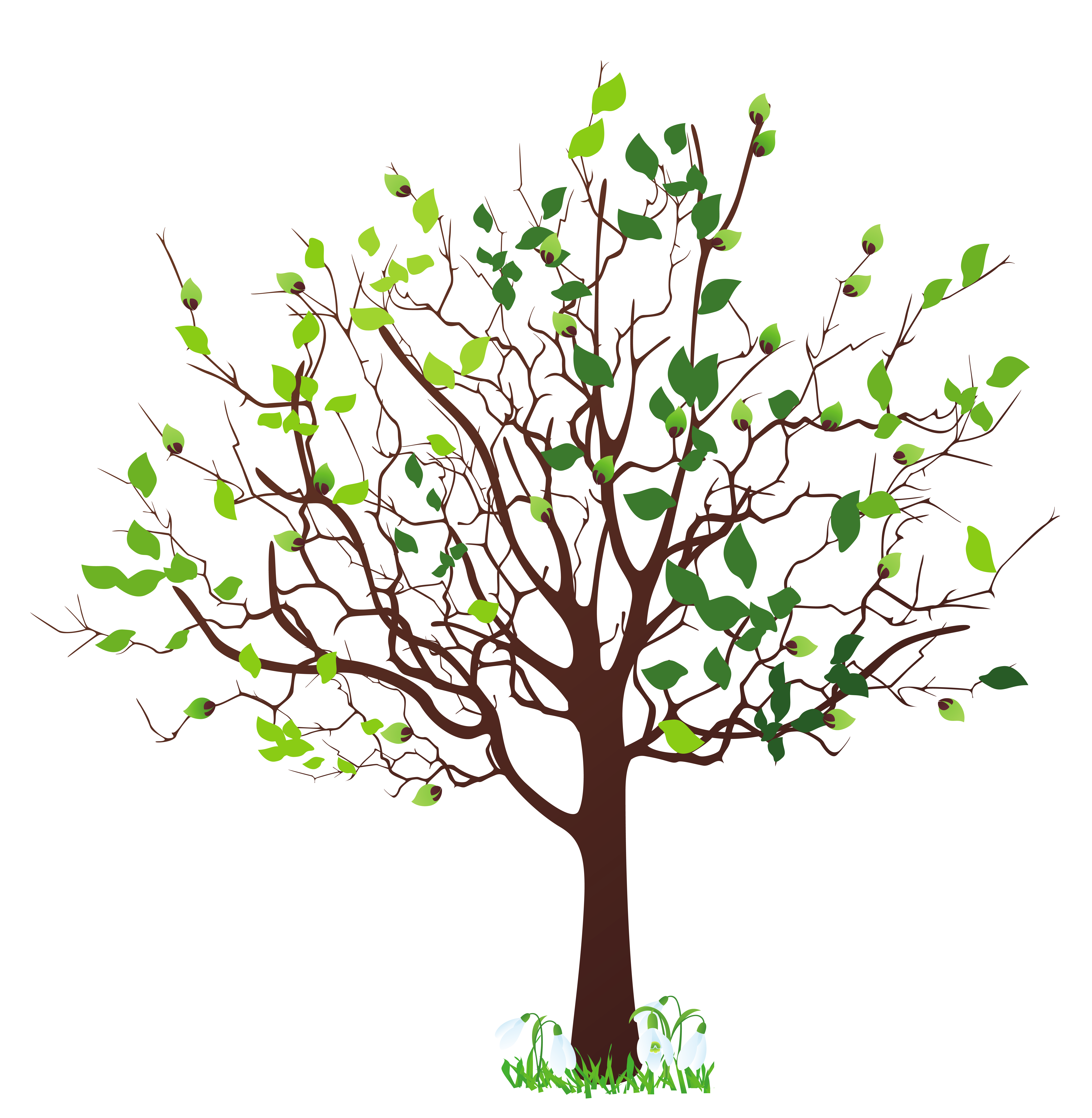 Free Spring Tree Cliparts, Download Free Clip Art, Free Clip